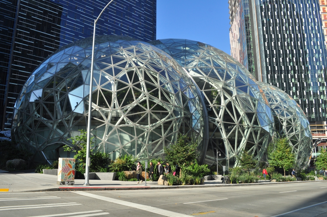 Amazon_Spheres_05